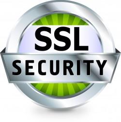 SSL Certificate Services Mumbai