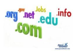 Why Choose Domain Name